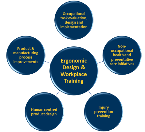 Ergonomic Design & Workplace Training Diagram