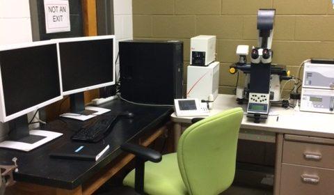 Leica DMI6000 Fluorescent Microscope
