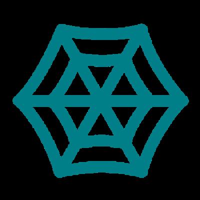 C4G Network Logo