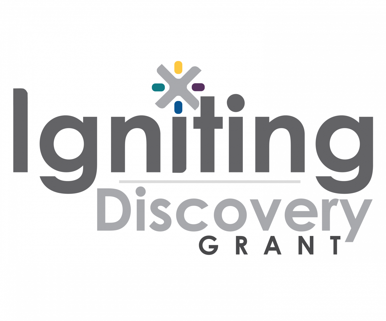 Igniting Discovery Grants