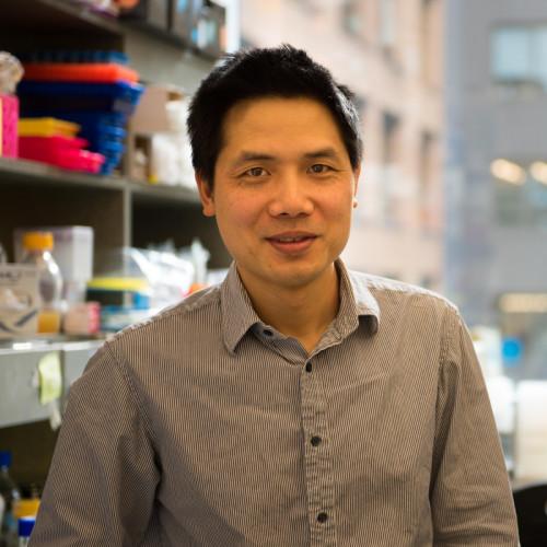 Dr. Yufeng Tong