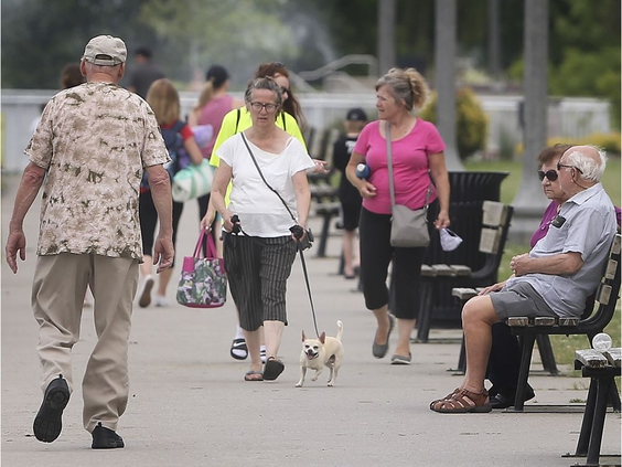 'Time to experiment' — envisioning a more healthy, diverse post-pandemic Windsor